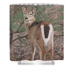The Yearling Shower Curtain