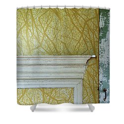 The Yellow Room No. 3 - Detail Shower Curtain