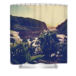 There Is Harmony Shower Curtain by Laurie Search
