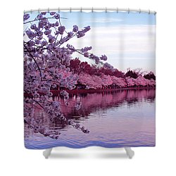 There Was A Time Shower Curtain by Iryna Goodall