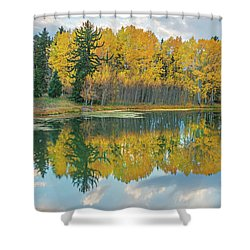 There's A Belvedere By This Pond.  Shower Curtain