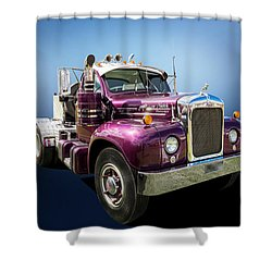 Thermo Dyne Shower Curtain