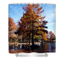 Theta Pond Shower Curtain by Lana Trussell