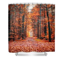 Thetford Forest Shower Curtain