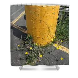 Shower Curtain featuring the photograph They Are Still        Here by Marie Neder