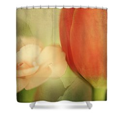 They Could Never Tear Us Apart Shower Curtain by Laurie Search