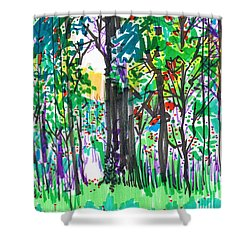 Shower Curtain featuring the drawing Thicket by Seth Weaver