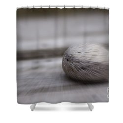 Simplicity In Grey Shower Curtain by Jill Smith