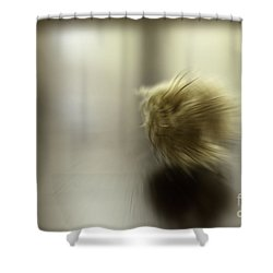 Simplicity In Gold Shower Curtain by Jill Smith