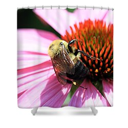 Shower Curtain featuring the photograph Think Bees by Paula Guttilla