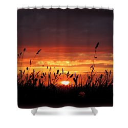 Thinking Of You Shower Curtain by Linda Hollis