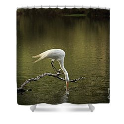 Shower Curtain featuring the photograph Thirst by Kim Henderson