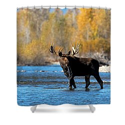 Thirst Quenching Shower Curtain