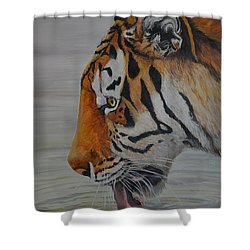 Thirsty Shower Curtain