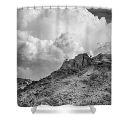 Thirsty Earth Shower Curtain by Racheal  Christian