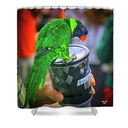 Thirsty Parrot Shower Curtain by Dennis Baswell