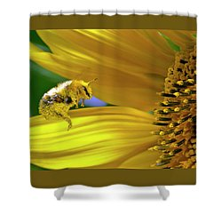 This Bee Needs A Bath Shower Curtain