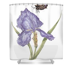 This Great Purple Butterfly Shower Curtain by Stanza Widen