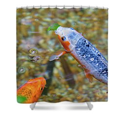 This Is Mine Fish Shower Curtain