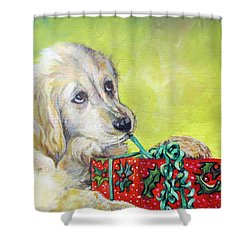Shower Curtain featuring the painting This Is Mine? Right? by Donna Tucker