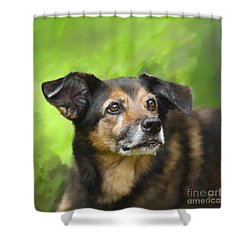 This Is Stella Shower Curtain