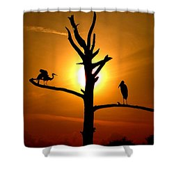 This Land Is Our Land Shower Curtain