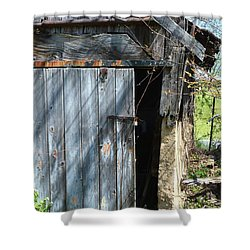 This Old Barn Door Shower Curtain by Kathy Kelly