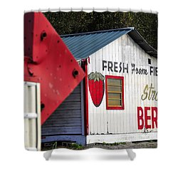 This Way For Strawberries Shower Curtain by David Lee Thompson