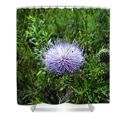 Thistle 2 Shower Curtain
