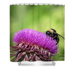 Thistle And Bee Shower Curtain