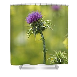 Thistle And Mustard Shower Curtain by Doug Herr