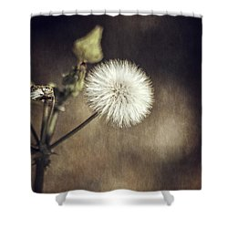 Shower Curtain featuring the photograph Thistle by Carolyn Marshall