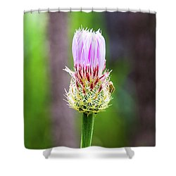 Thistle In The Canyon Shower Curtain