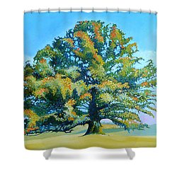 Thomas Jefferson's White Oak Tree On The Way To James Madison's For Afternoon Tea Shower Curtain by Catherine Twomey