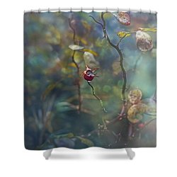 Thorns And Roses Shower Curtain by Agnieszka Mlicka