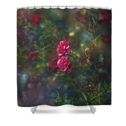 Thorns And Roses II Shower Curtain by Agnieszka Mlicka