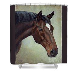 Thoroughbred Horse, Brown Bay Head Portrait Shower Curtain