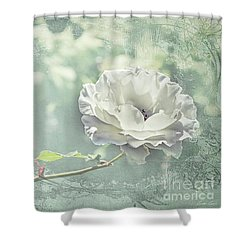 Shower Curtain featuring the photograph Thoughts Of You by Linda Lees