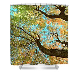 Thousands Of Voices Shower Curtain by Todd Breitling