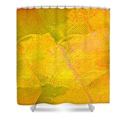 Threads  Shower Curtain by Dan Twyman