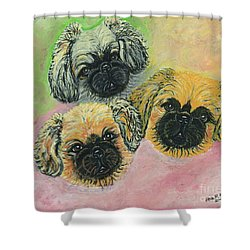 Shower Curtain featuring the painting Three Amigos by Ania M Milo