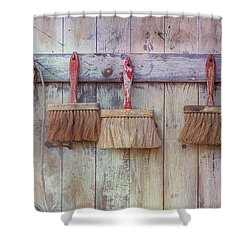 Shower Curtain featuring the photograph Three Brushes by Tom Singleton