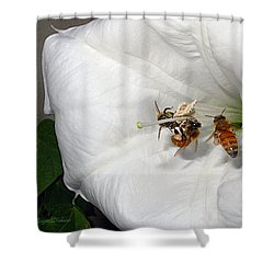 Shower Curtain featuring the photograph Three Busy Bees by Joyce Dickens