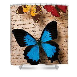 Three Butterflies Shower Curtain by Garry Gay
