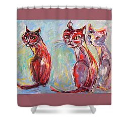 Three Cool Cats Shower Curtain