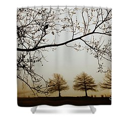 Shower Curtain featuring the photograph Three Cypress In The Mist by Iris Greenwell