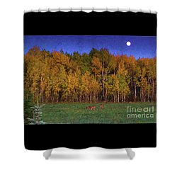 Three Deer And A Moon Shower Curtain