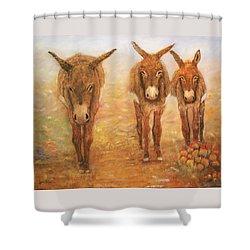 Three Donkeys Shower Curtain