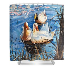 Three Ducks Shower Curtain