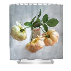 Three English Roses Shower Curtain by Louise Kumpf
